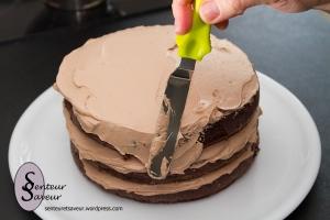 Recette Glacage Chocolat Blanc Mascarpone Layer Cake